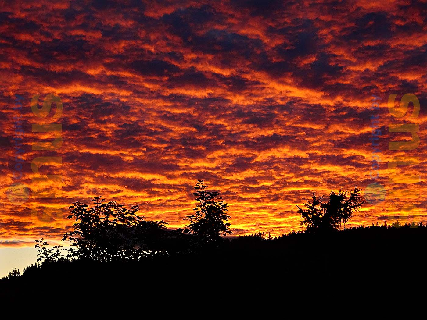 Wolkenhimmel in der Abendsonne
