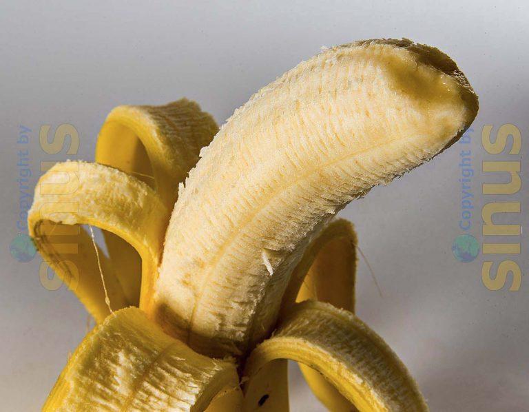 einzelne Banane